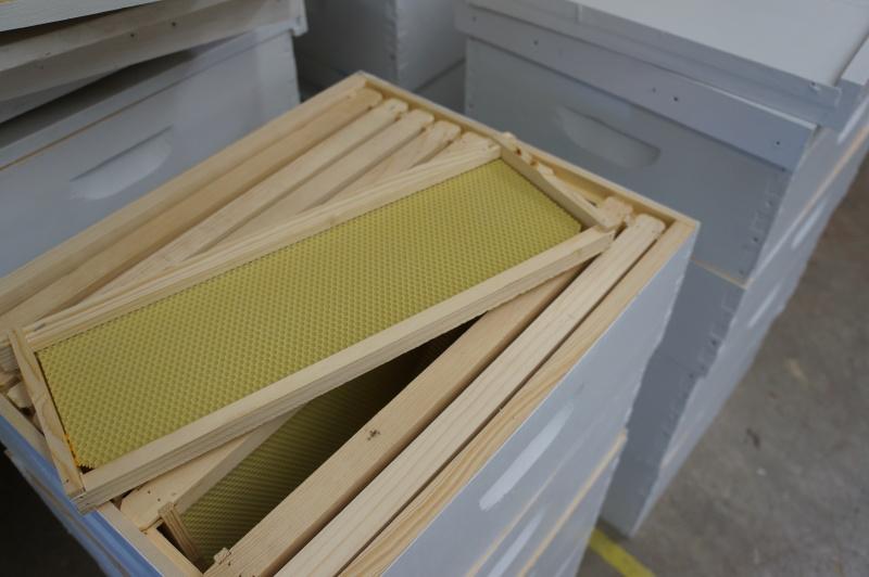Beehive noxes-2